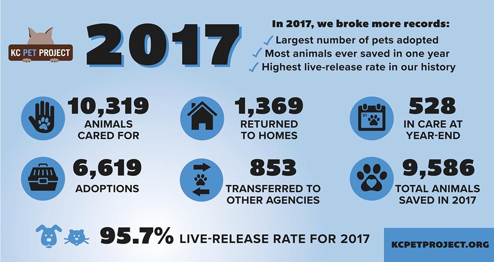 2017 stats