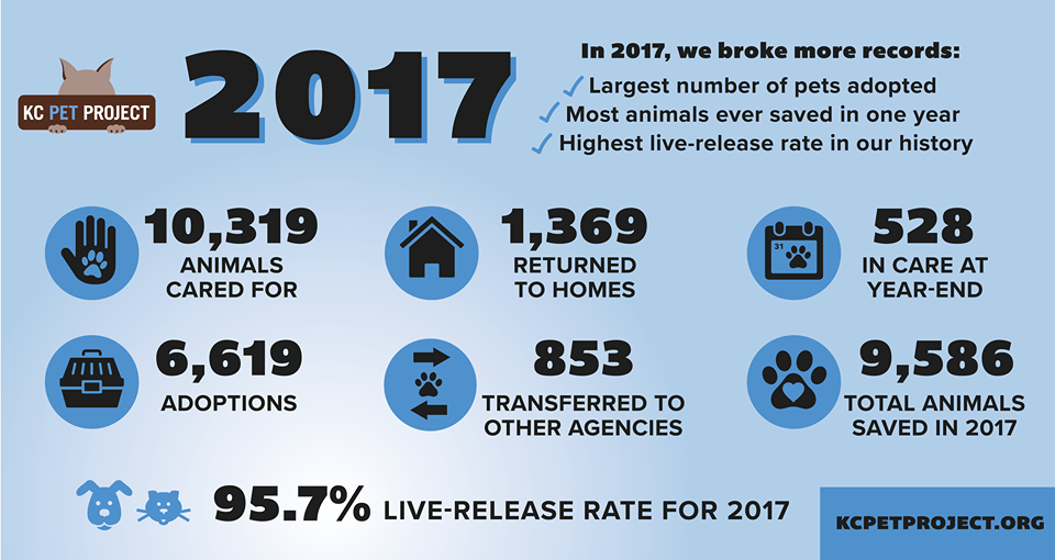 2017 Statistics