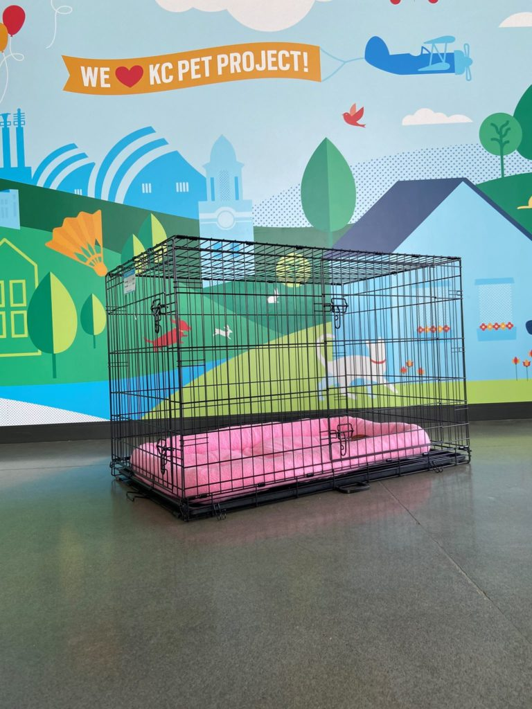 kennel for fosters