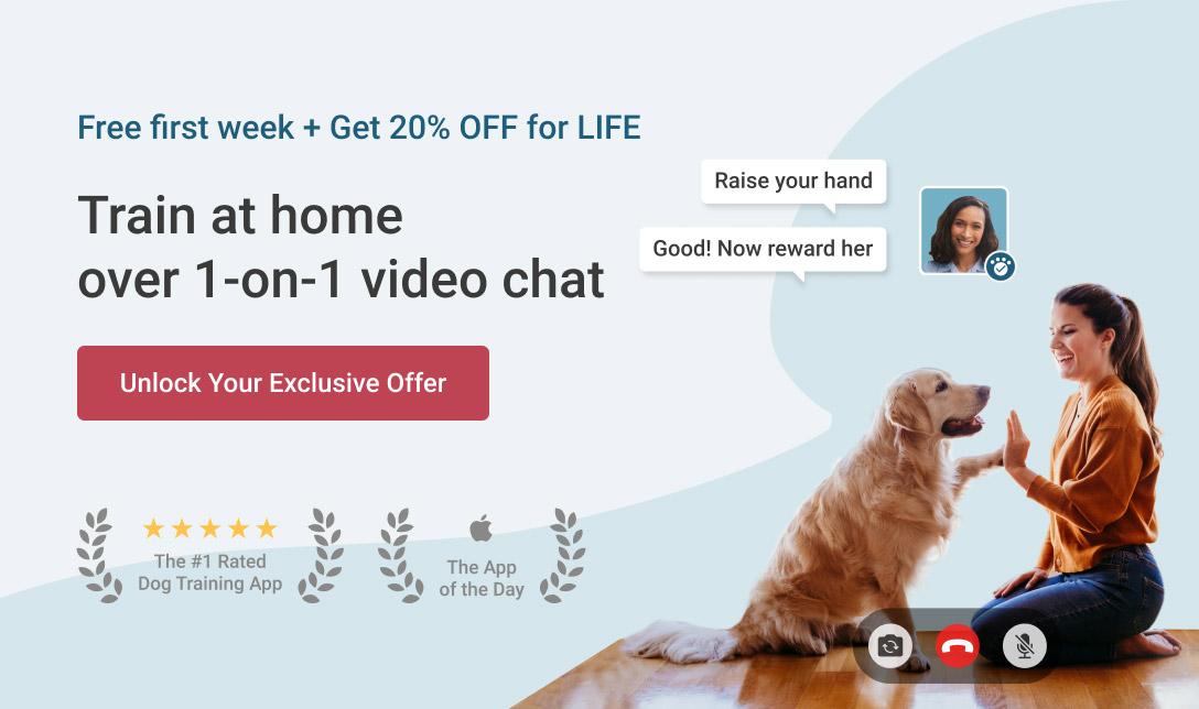 Good Pup Training / Behavior Resources - KCPP