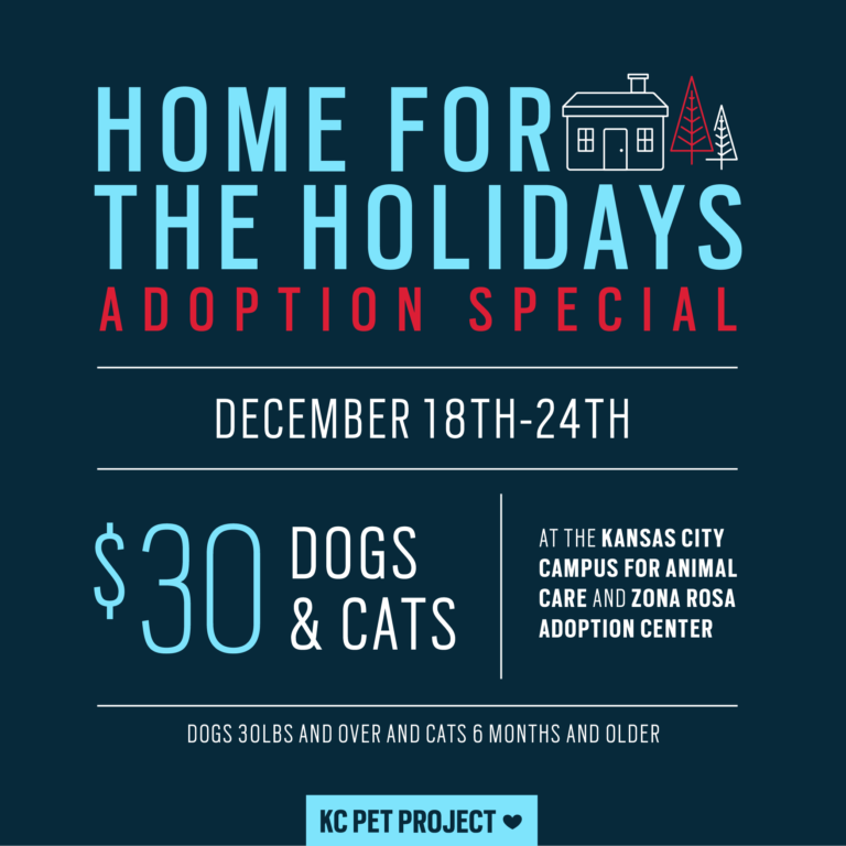 home for the holidays special