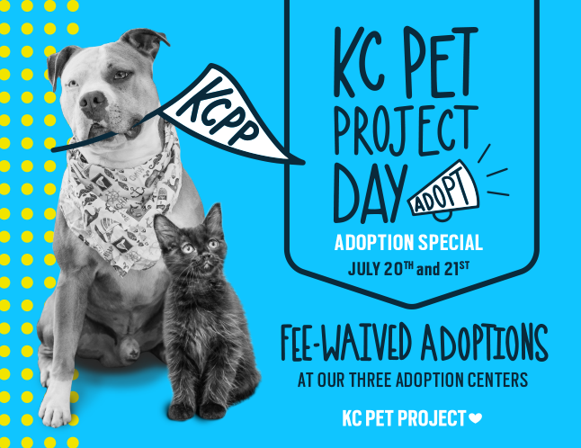 KCPP Day Adoption Special