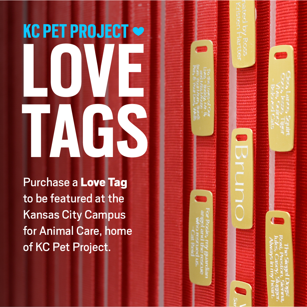love tags kcpp