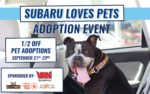 subaru-loves-pets