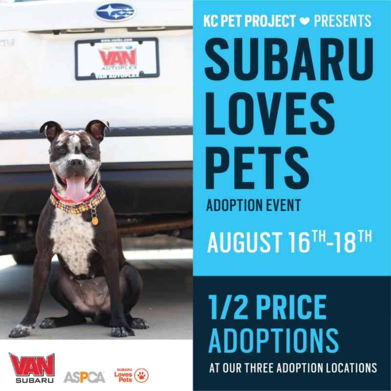 subaru loves pets event
