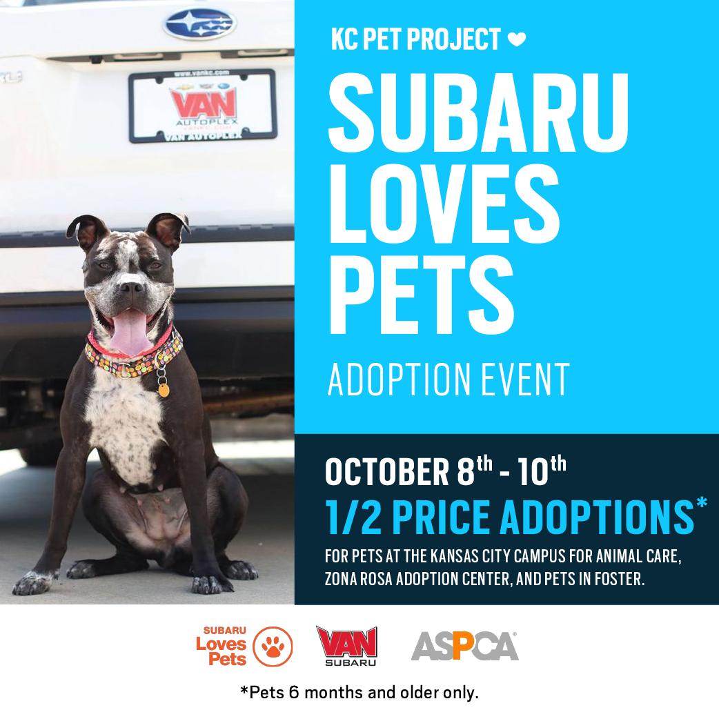 Subaru Love Pets