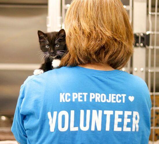Volunteer with Kitten