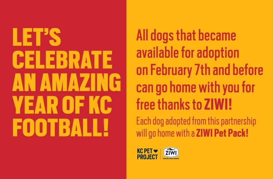 ZIWI Adoption Event