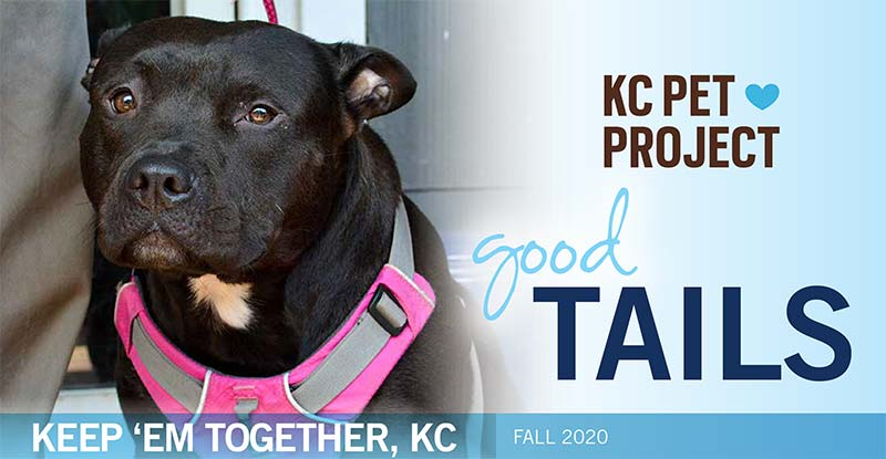 KC Pet Project Fall 2020 Newsletter