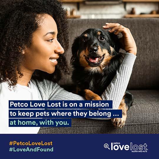 Petco Love Lost