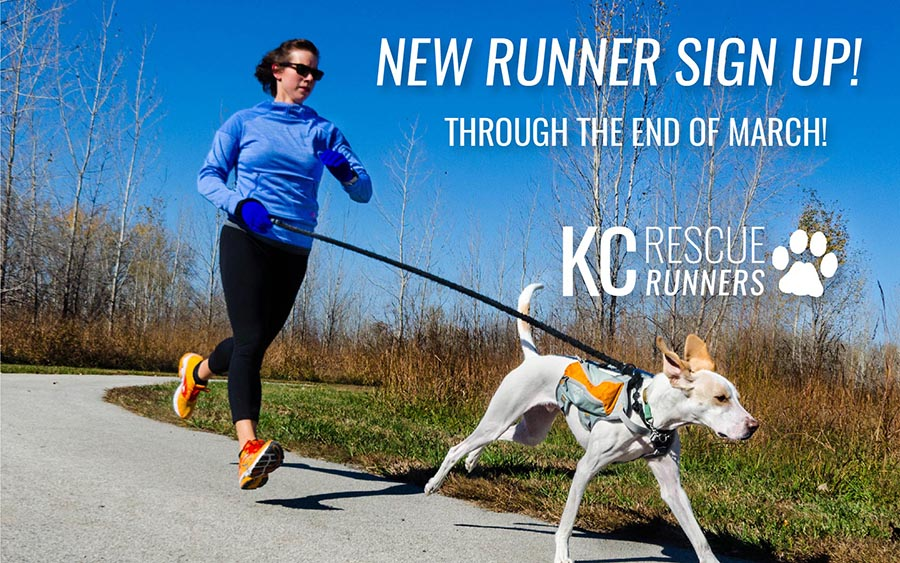 kc-rescue-runners-webslider