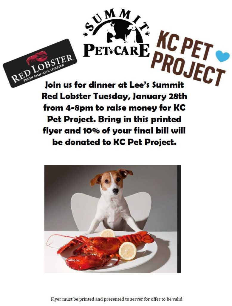 Summit Pet Care and Red Lobster Fundraiser