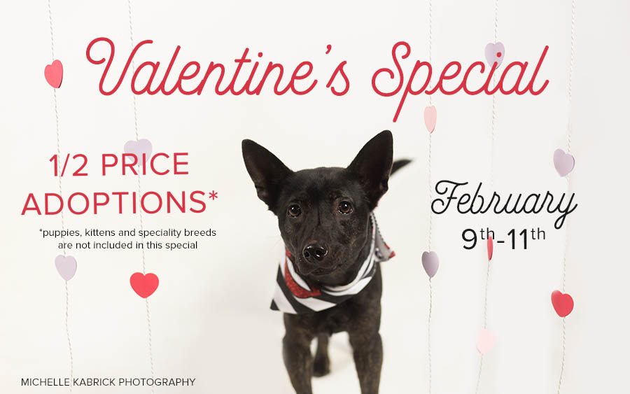 valentines-special-2018
